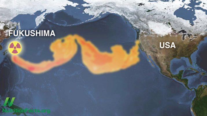 Fukushima Radiation Has Polluted Onethird Of The Earth - Japan radiation map 2016